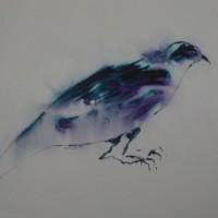 ' Bird 1 '