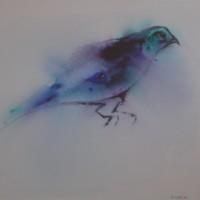 ' Bird 2 '