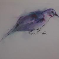' Bird 3 '