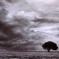 ' Landscape 1 '