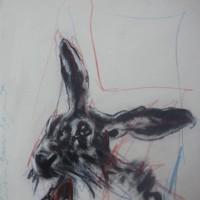 """"""" Rabbit """""""