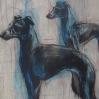 """"""" Blue Dogs 2 """""""